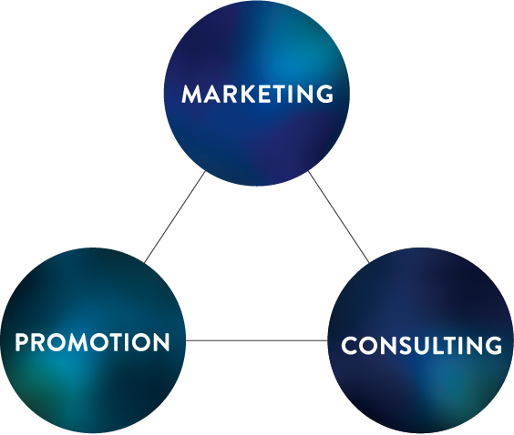 MARKETING PROMOTION CONSULTING