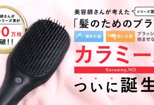 ハホニコ様 美容商材ランディングページ カラミーノブラシ