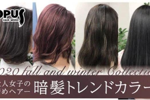 HAIR WORK OPUS様 秋冬トレンドカラー紹介ブログ記事